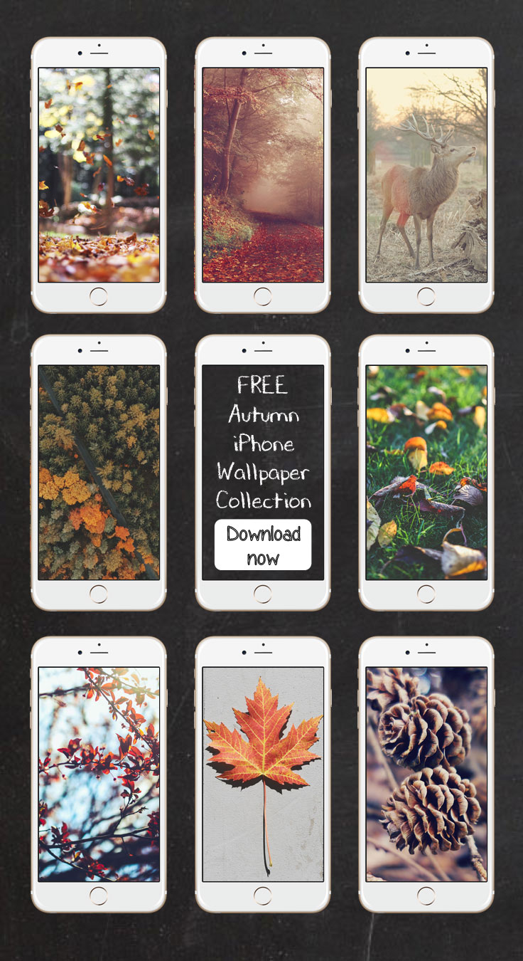 Free Autumn iPhone Wallpaper Collection ★ Download it at www.preppywallpapers.com or follow us on Pinterest @blossomcases