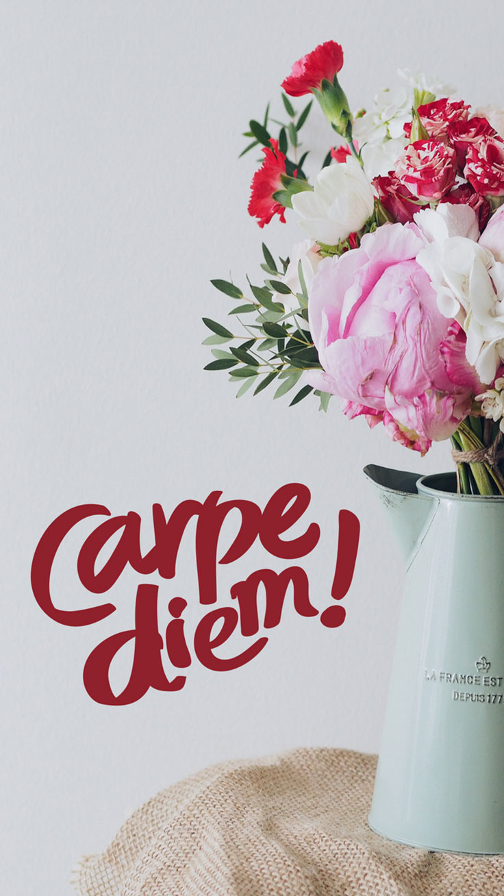 Carpe Diem Quote Flowers iPhone 7 Plus Wallpaper / Tap to download for free!