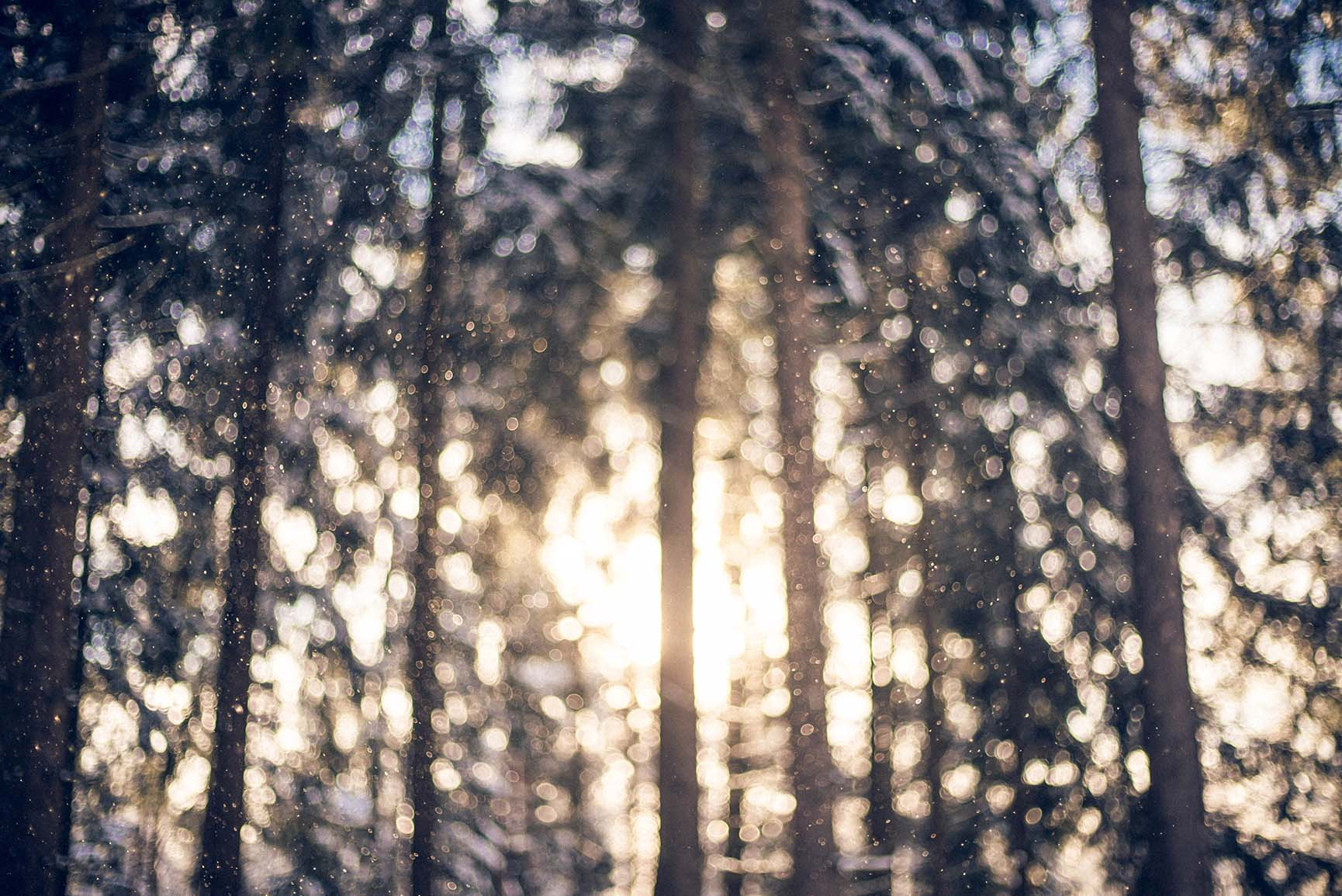 13 x Winter Landscapes iPhone Wallpaper Collection